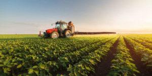 agricultura biodinamica calendario ➤ Compara precio para comprar en LIBRERIAESOTERICA.NET
