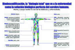 ➤ biodescodificación tiroides Analiza precios para comprar con LIBRERIAESOTERICA.NET