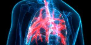➤ bronquitis biodescodificación Analiza precios al comprar en LIBRERIAESOTERICA.NET