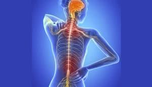 esclerosis multiple tratamiento natural ➤ Ayuda al comprar en LIBRERIAESOTERICA.NET