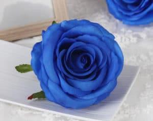 ➤ flor calavera Ayuda al comprar en LIBRERIAESOTERICA.NET