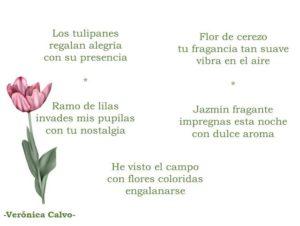 haikus de amor ➤ Compara precios para comprar con LIBRERIAESOTERICA.NET