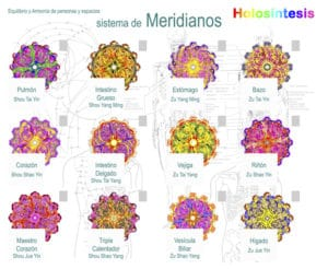 holosintesis ➤ Analiza precio al comprar con LIBRERIAESOTERICA.NET
