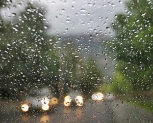 lluvia de dinero ➤ Ayuda al comprar con LIBRERIAESOTERICA.NET