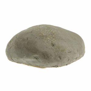 ➤ piedra shungita Compara precios para comprar en LIBRERIAESOTERICA.NET