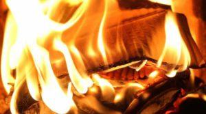 quemar ruda seca ➤ Consejos al comprar en LIBRERIAESOTERICA.NET